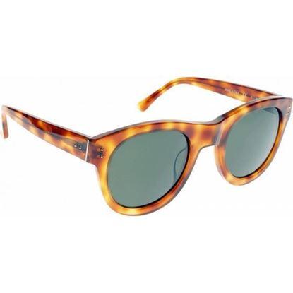 Image of Michael Kors Brown MKS825 Monroe Sunglasses