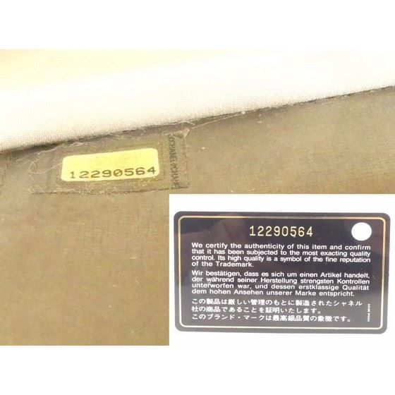 """Picture of Chanel rare gold  WOC """"wallet on chain"""" bag"""